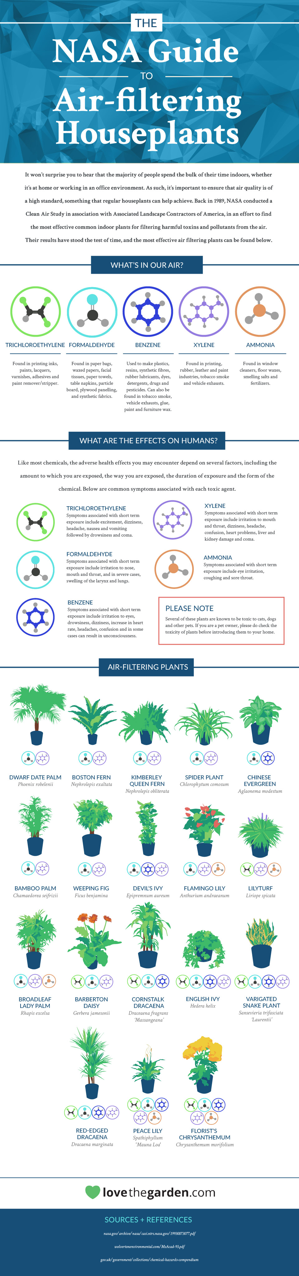 Infographic luchtzuiverende planten - Green is all